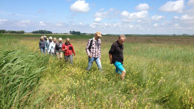 Rondleidingen van stichting 'de Hooge Weide' Bakkum